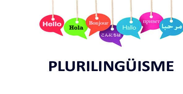capçalera plurilingüisme-web