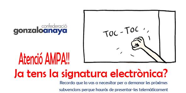 Firma digital-Gonzalo Anaya-cabecera